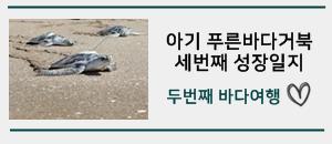 아기 푸른바다거북 세번째 성장일지