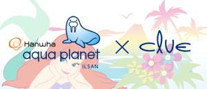Clue 와 아쿠아플라넷 일산이 함께하는 인어공주 이벤트!!