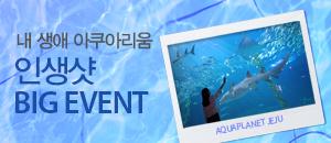 내 생애 아쿠아리움 인생샷 BIG EVENT