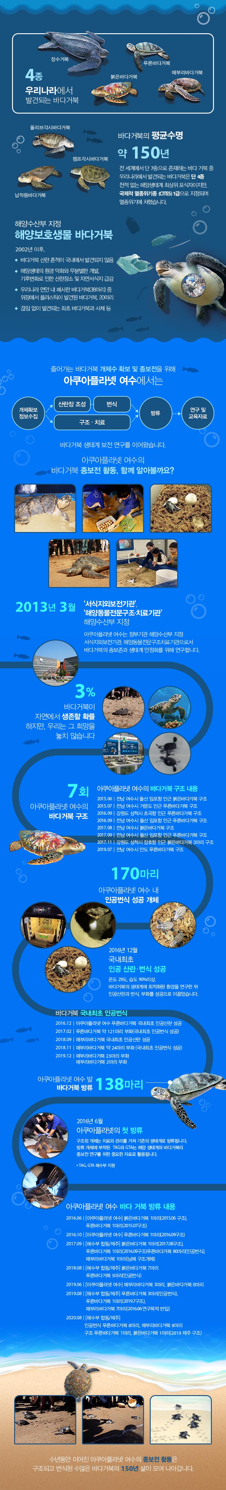 한눈에 알아보는 바다거북 종보전 인포그래픽
